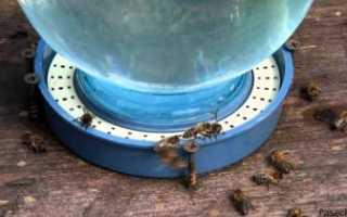 Поилка для пчел — виды, изготовление своими руками, рекомендации