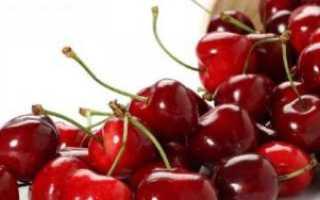 Шпанка (вишня): описание сорта, фото