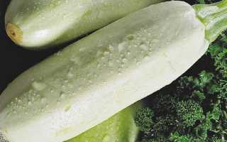 Кабачок ролик: описание сорта и характеристики, выращивание, уход