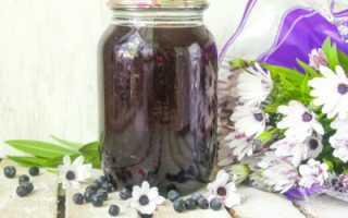 Компот из черники на зиму: 4 рецепта вкусного и полезного черничного компота