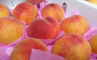 Как заморозить персики на зиму в домашних условиях: 6 способов