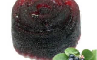 Мармелад из черноплодной рябины: рецепты приготовления в домашних условиях — Сусеки
