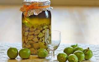 Зеленые грецкие орехи с медом: рецепт, полезные свойства, как принимать, отзывы
