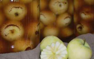 Помидоры по-немецки с яблоками: несколько способов порадовать себя зимой