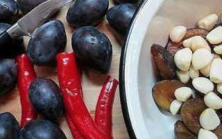Аджика из сливы на зиму: рецепты