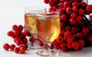 Вино из рябины красной в домашних условиях простой рецепт