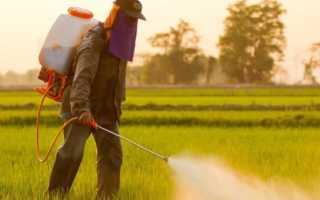 Применение и механизм действия избирательных гербицидов