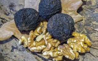 Черный орех: состав, польза, применение, вред и противопоказания
