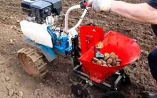 Способы посадки картофеля с помощью мотоблока: какое можно использовать навесное оборудование