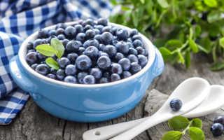 Как правильно заморозить чернику на зиму в холодильнике: 5 способов заморозки — Сусеки