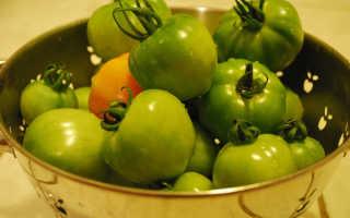 Зеленые помидоры на зиму: вкусные и простые рецепты в банке