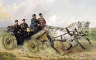 Орловская порода лошадей: характеристика, фото и описание