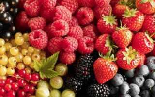 Какие бывают ягоды названия и фото