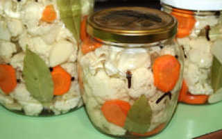 Цветная капуста: быстрые и вкусные рецепты, приготовление быстрых блюд из капусты с морковью