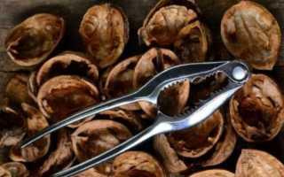 Скорлупа грецкого ореха: применение в огороде, как удобрение