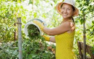Удобрение из сорняков и травы — как использовать, свойства