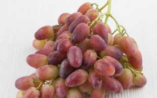 Виноград Ризамат: описание сорта, фото, отзывы