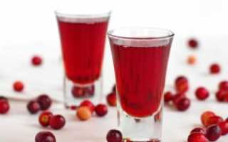 Настойка из клюквы на водке и спирту в домашних условиях: рецепты