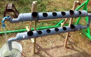 Клубника в трубах ПВХ: выращивание вертикально и горизонтально