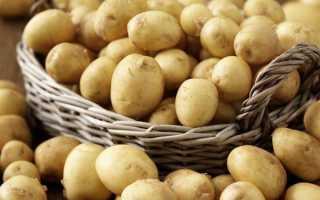 Картофель: 20 лучших ранних и скороспелых сортов с описанием