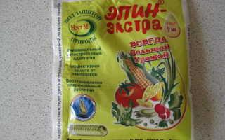 Эпин для рассады помидор: инструкция по применению, как разводить для опрыскивания