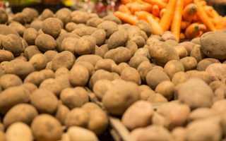 Хранение картофеля в погребе зимой: оптимальная температура
