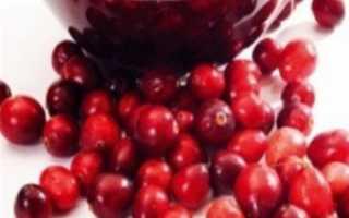 Брусника в сиропе на зиму: 3 рецепта приготовления ( отзывы)