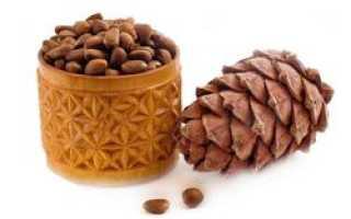 Скорлупа кедрового ореха — применение в народной медицине