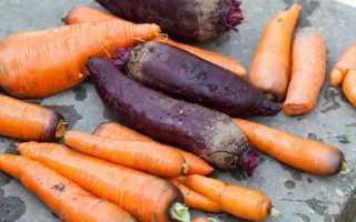 Как хранить свеклу и морковь на зиму правильное хранение