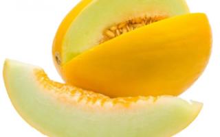 Медовая дыня — характеристика этого сорта с фото и отзывами