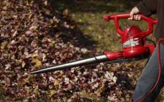 Пылесос садовый воздуходувка: отзывы и советы по выбору