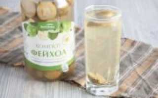 Как сварить компот из фейхоа: рецепты приготовления напитка из свежего и сушеного фейхоа