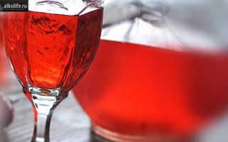Настойка из ягод барбориса — на водке (смогоне, спирте)