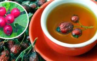 Чай из боярышника: польза, как заваривать, рецепты