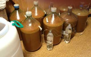 Домашнее вино из яблочного сока: пошаговый рецепт, быстро и просто от Марины Выходцевой