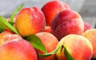 Правильная посадка персика осенью