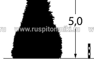 Кипарисовик Лавсона — внешний вид, условия для выращивания
