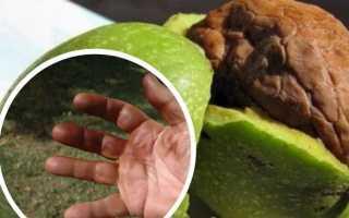 Чем отмыть руки после чистки грецких орехов